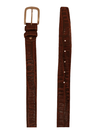 Tan and Dark Brown Leather Belt with Textured Crocodile-Like Design
